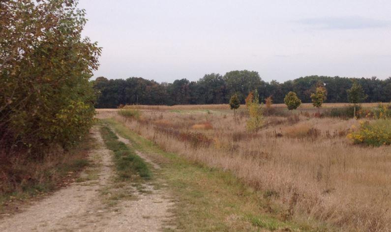 Marckolsheim schlettstadterfeld fonci re hugues aur le for Achat terrain a construire