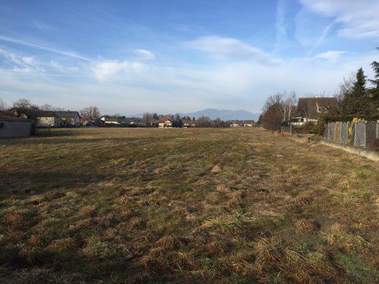 ruelisheim 2