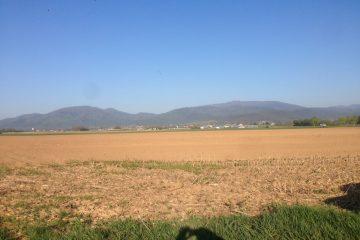 Vue terrain RAEDERSHEIM - Haut Rhin