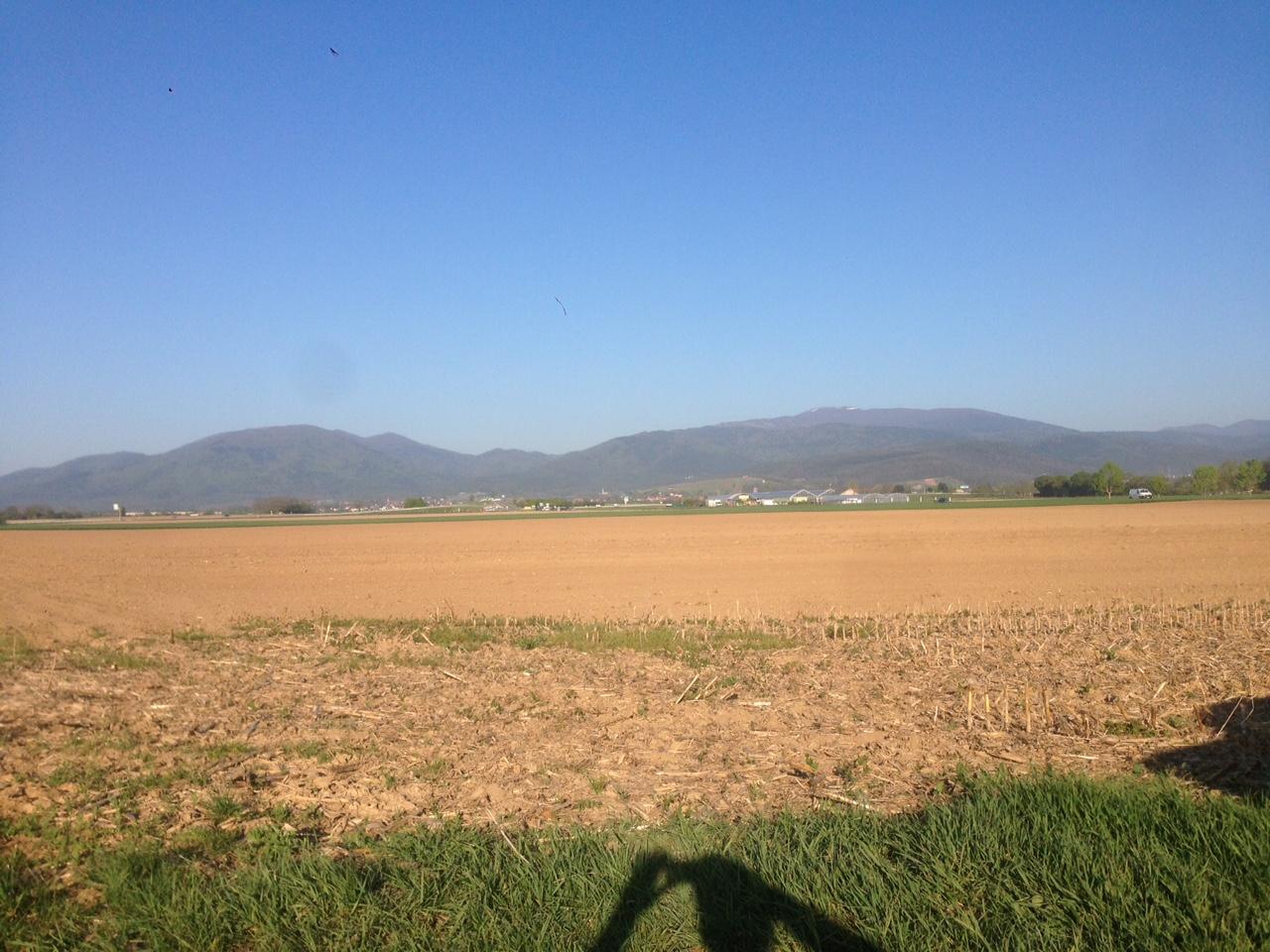 Terrain b tir raedersheim afua fonci re hugues for Achat terrain a construire